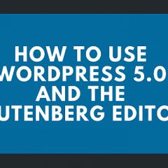 WordpressPLR